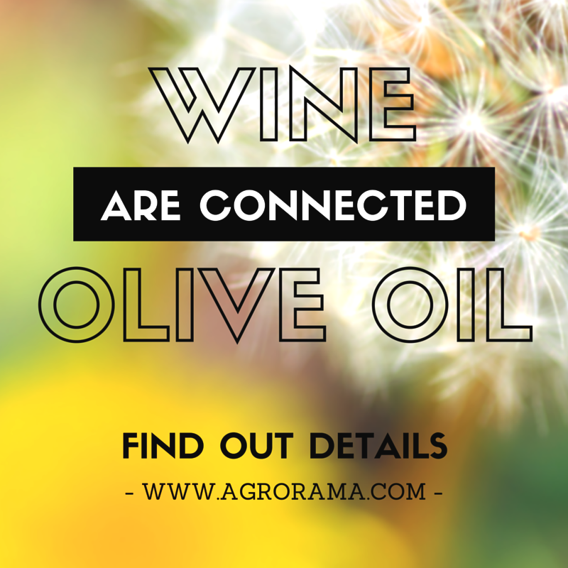 olive-oil-and-wine4